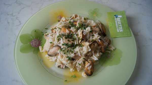 salade moules froides