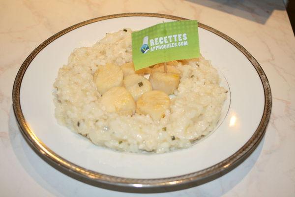 Coquilles st jacques et risotto - Quantite de riz par personne ...